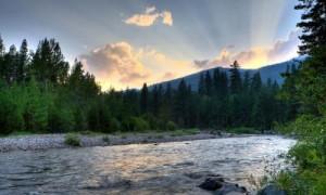 bitteroot river montana
